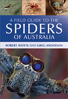Field Guide to Spiders of Australia for CSIRO Publishing